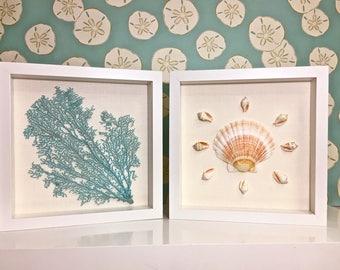 Beach Decor - Framed Natural Seahells and Sea Fan - coastal nautical embellished seashells starfish sealife
