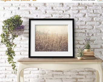 Wheat Field Photograph, Nature Photo, Nature Landscape Photography, Golden Prairie, Farmhouse Wall Decor, Rustic Decor, Country Decor