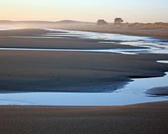 Limantour at Low Tide