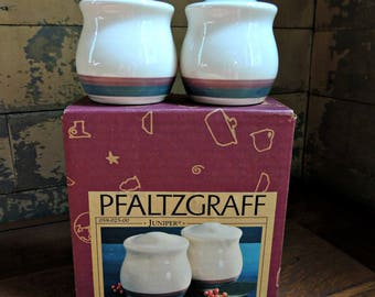 Pfaltzgraff Salt & Pepper Shakers Juniper - New in Box / Vintage Salt and Pepper Set / Pfaltzgraff Juniper / Vintage Pfaltzgraff