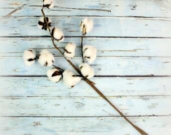 Cotton Stem, Farmhouse Cotton, Farmhouse Decor, Floral Stems, Cotton Boll Stem, Floral Supplies, Faux Cotton, Home Decor, Rustic Decor