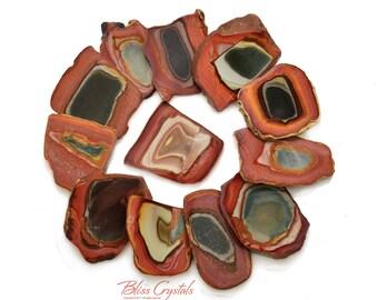 1 XL POLYCHROME JASPER Slab Slice Polished aka Rhyolite Tumbled Stone Healing Crystal and Stone #PJ20