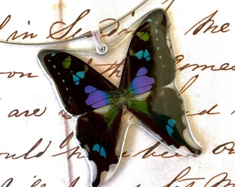 Real Whole Butterfly Pendant Necklace, Purple Spotted Swallowtail