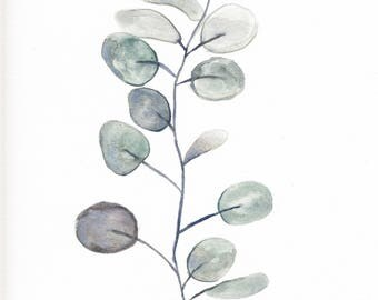 Original 8 x 10 inch watercolor painting of a eucalyptus branch
