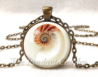 CHAMBERED NAUTILUS PENDANT Shell Necklace Chambered Nautilus Necklace Fibonacci Spiral Sacred Geometry Seashell Pendant Golden Mean