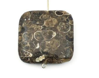 1  Turritella agate stone bead / 30mm square  #PP 124