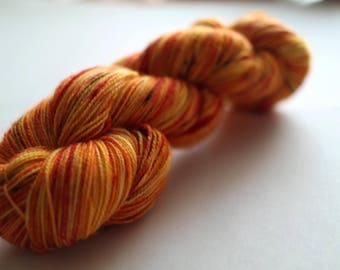 Pumpkin Mornings SW BFL Nylon Sock Yarn