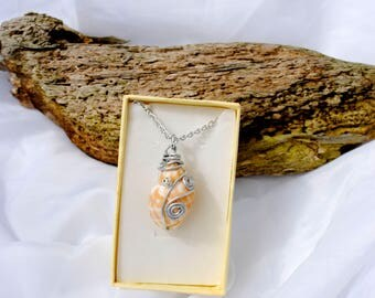 Beautiful tulip shell wire work and  bead  necklace