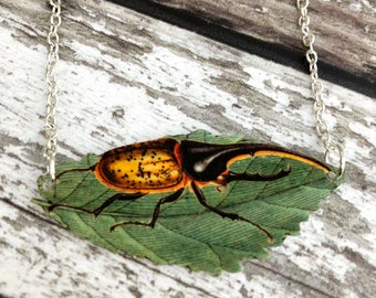 Beetle Necklace, Bug Necklace, Beetle, Beetle Pendant, Entomology, Bug Lover, Insect Necklace