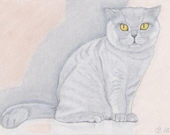 Cat / cat / chat / pastel original drawing cat British KH hangover