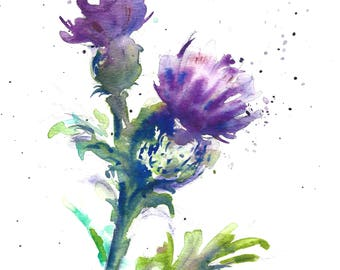 Thistle original watercolour painting