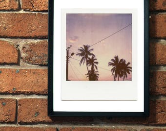 Sunset Palm Trees Madagascar, Polaroid Print