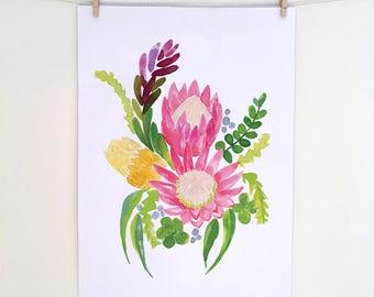 Australian Natives King Protea, botanical art, illustration Protea, Banksia Watercolour, Digital download