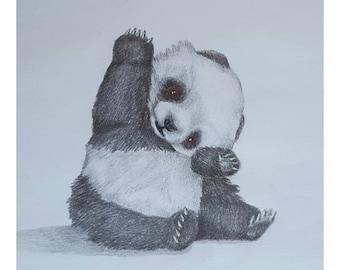 Panda Cub - Signed Limited Edition A4 Print of an original pencil drawing.