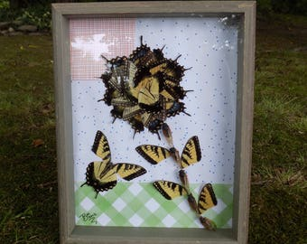 A Bootiful Flower and a Butterfly  // Real Framed Butterflies