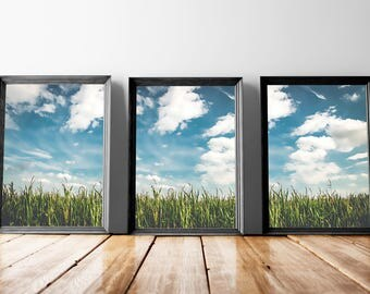 Cloudy Sky Wall Art | Blue Sky Watercolor, Farm Sky Landscape, Blue Sky Artwork, Grassland, Grassy, Grass Painting, Cloudy Sky Art