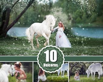 10 Majestic unicorn horse overlays, realistic animal, white horse, Photoshop overlay, fantasy, magic, fairy, star Digital Overlays, png