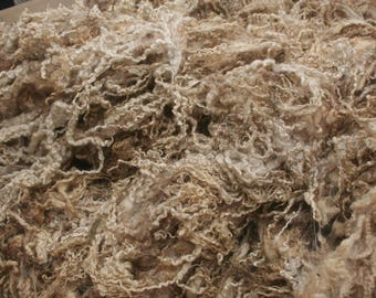 Blue faced leicester raw wool 2.75kg/6.06lb