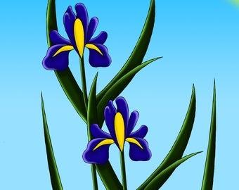 Irises 1# 8x10 size