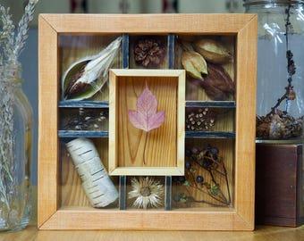 Shadow Box, Nature Decoration, Rustic Decor, Cabin Decor, Cottage Decor, Nature Art, Botanical Decor, Organic Art