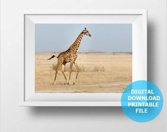 Digital Download, Giraffe Photo, Giraffe Wall Art, Nursery Animal Prints, Giraffe Print Download, Giraffe Digital Print, Giraffe Printable