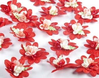 pretty multicolored flower petal