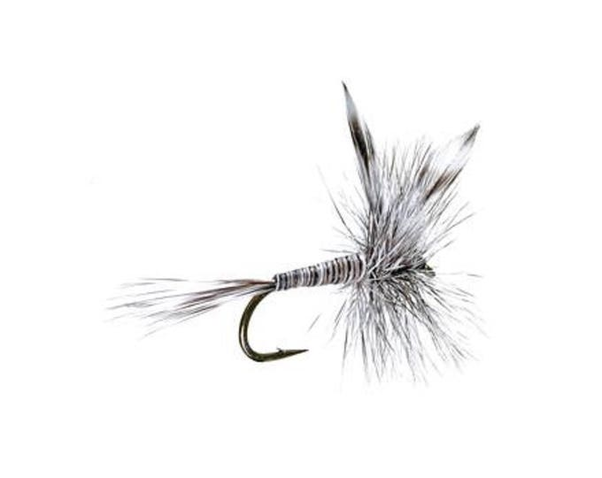 Mosquito Classic Dry Fly - Hook Size 12 - Hand-Tied Fly Fishing Trout Flies