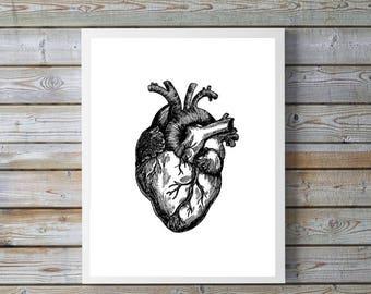 16x20 inches, Heart Print, Vintage Heart, Human, Anatomy, Heart Illustration, Printable Art,  print at home, digital download, vintage