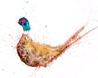 Scrappy the Pheasant - Signed Print of my original watercolour painting