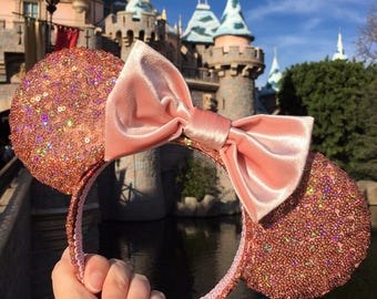 Velvet & Rose Gold Mouse Ears