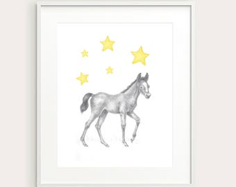 Baby Horse.Foal.Baby Animal.Nursery Art. Nursery/Kid's Wall Decor. Children's Art.Kid's Room Print. Baby's Room Print.Children's Art Print