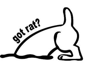 Barn Hunt Got Rat? Vinyl Decal Sticker