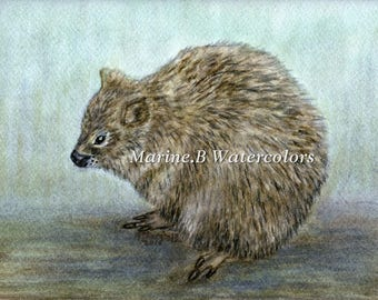 Watercolor Porcupine Art Print 8 x 10 in