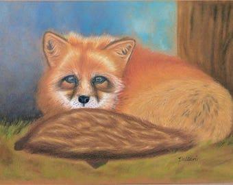Framed Original Fox Art in Colored Pencil