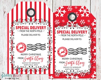 Printable Christmas Gift Tags, BLANK From Santa Gift Tags, Santa Gift Tags, Special Delivery, Christmas Tags, Santa Tags, INSTANT DOWNLOAD