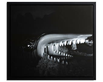 "Fine Art Photography ""Monstro"" Framed Stretched Canvas"