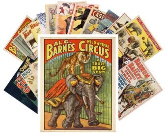 Postcard Pack (24 cards) Vintage Circus Animals Elephants Travel Poster CC1012