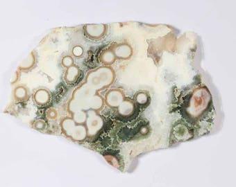 Ocean Jasper (is an agate), Malagasay Republic (Madagascar)