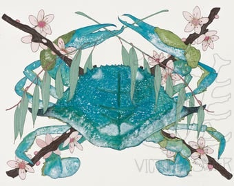 Blue Crab with Japanese Cherry