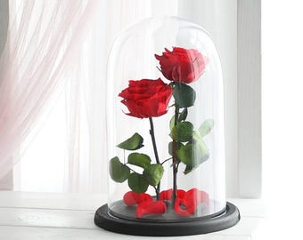 On Sale Beauty And The Beast Rose Large Enchanted Rose