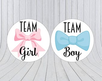 Team boy team girl stickers, Gender reveal stickers, Team pink, Team blue, he or she, pink or blue, Gender reveal party, 203