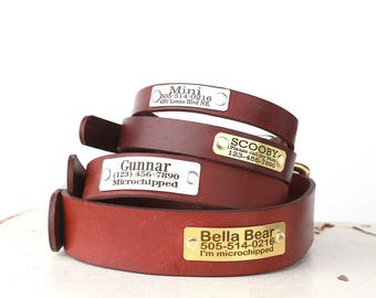 Personalized Engraved Brown Leather Dog Collar -- Classic Belt Buckle Style with rivet nameplate