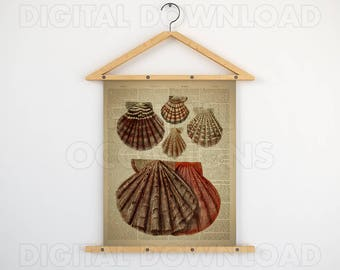 Dictionary print, Beach digital print, Shell wall art, Nautical wall prints, Shell art print, Antique nautical prints, Instant vintage print
