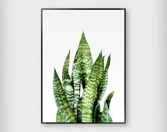 Green and Yellow Leaves Print | Botanical | Yellow - Green | Tropical - Leaf - Poster