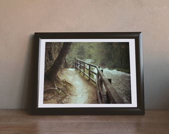 Two Paths - Downloadable Photography Print Wall Art