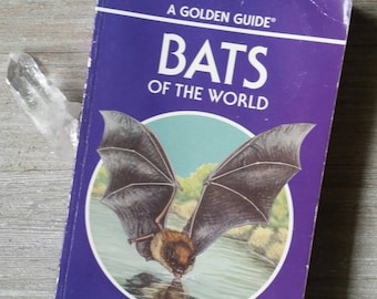 Bats of the World ~ Vintage Golden Guide ~ Creatures of the Night ~ Illustrated