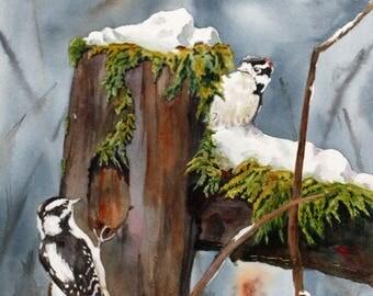 B3  Original Artwork//Hunt & Peck//Woodpeckers//Birds in Watercolour// Birds in Snow