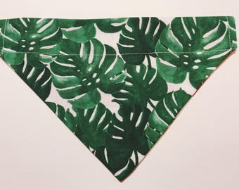 Jungle | Reversible Dog Bandana