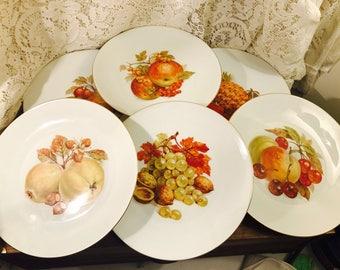 Set of Six (6) Bareuther Waldsassen, Bavaria-Germany Salad/Dessert Plates - Pattern 112 Various Fruit