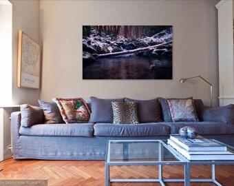 Landscape Photography Forest River Fine Art Print